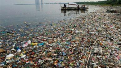 Photo of Menos microplástico, mais investigação. O pacto da indústria com a sustentabilidade